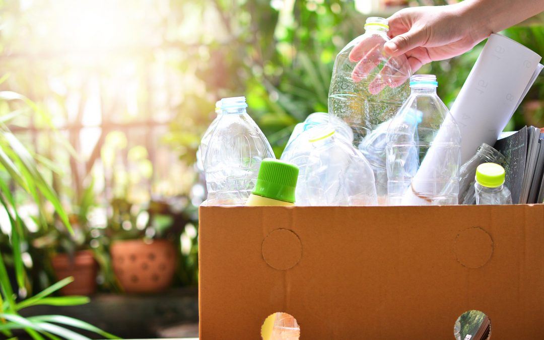 Simple Ways to Protect the Environment at Home