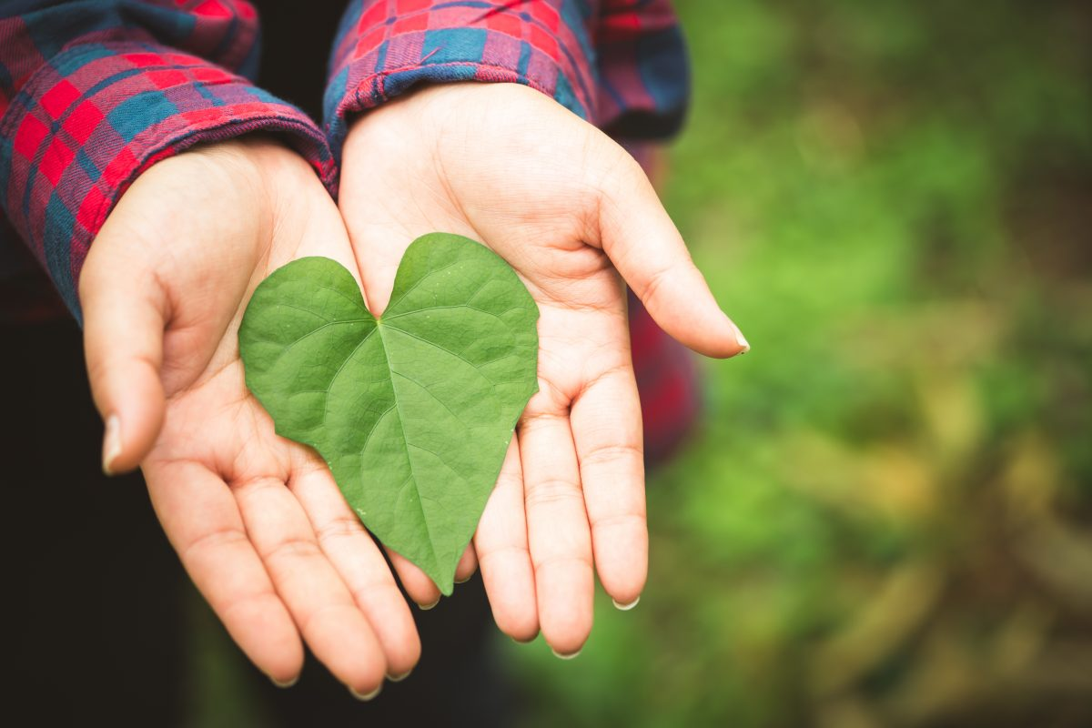 Simple Ways to Go Green